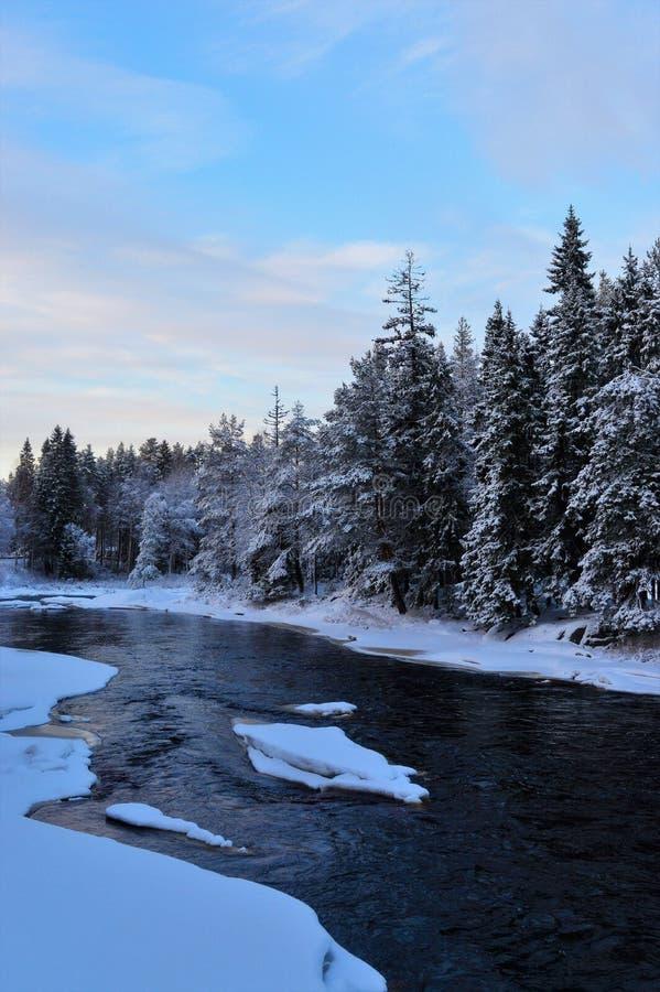 Koude de wintermiddag in Koiteli-stroomversnelling Bevroren rivier, dicht net bos royalty-vrije stock afbeelding