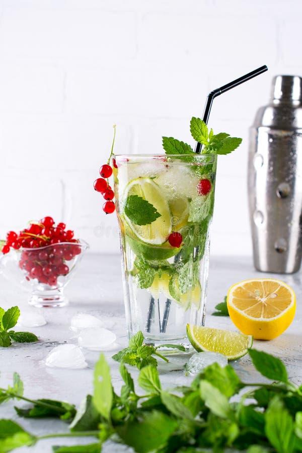 Koude de zomer eigengemaakte fruit en bessenlimonade Mojito, limonade of sangria royalty-vrije stock afbeeldingen