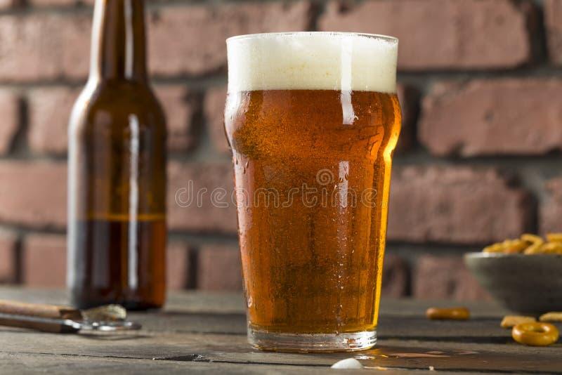 Koude die Amerikaans Lager Crafter Beer verfrissen royalty-vrije stock foto's