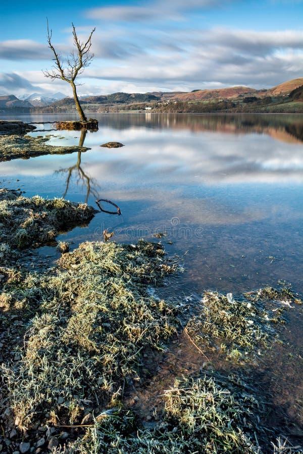Koude en Frosty Morning At Ullswater In het Meerdistrict, het UK stock afbeelding