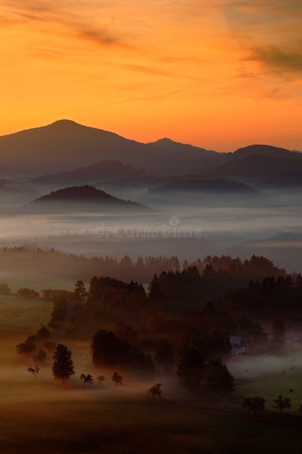 Koude nevelige mistige ochtend met zonsopgang in een dalingsvallei van het Boheemse park van Zwitserland Heuvels met mist Landsch stock afbeeldingen
