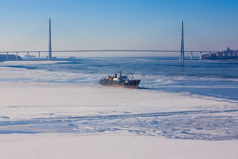 Koude overzees, die met ijs wordt behandeld royalty-vrije stock afbeeldingen