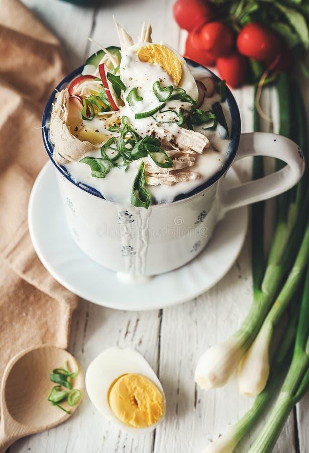 Koude Russische soep met verse groenten, eieren en vlees royalty-vrije stock afbeeldingen