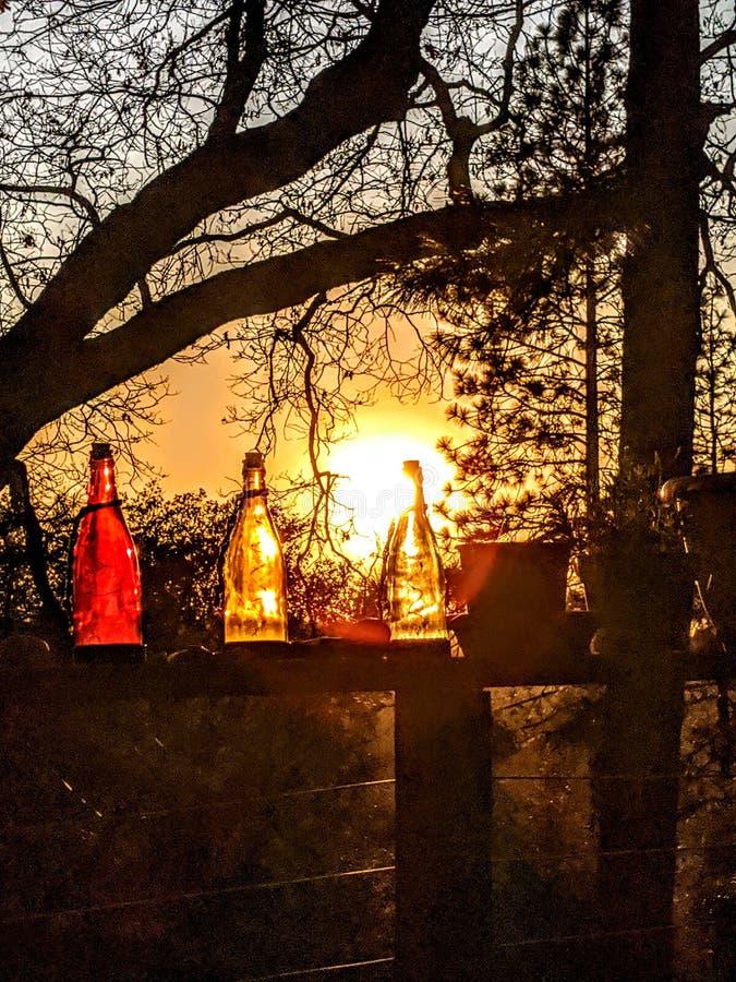 Koude twilight luzy in de winter royalty-vrije stock foto's