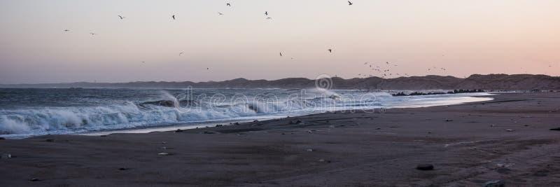 Koude zonsondergang bij het strand met overzees schuim en vogels, Thisted, Denemarken stock afbeelding