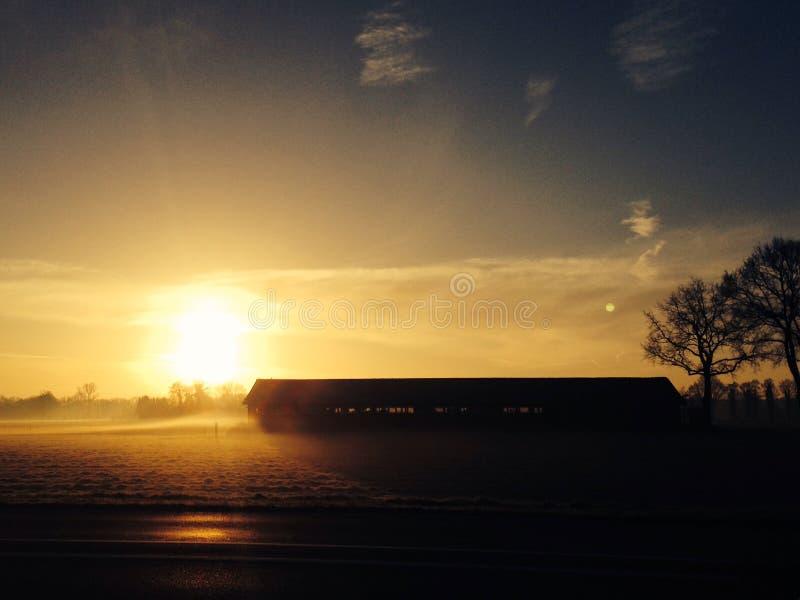 Koude Zonsopgang, Nederland stock foto