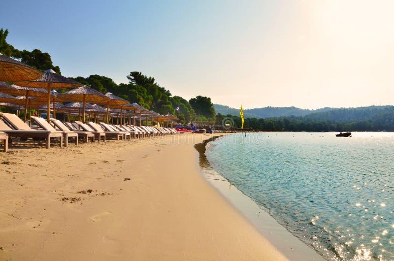 Koukounaries海滩在斯基亚索斯岛,希腊 免版税图库摄影