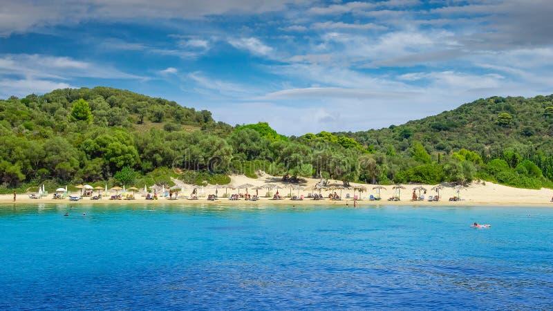 Koukounaries海滩,斯基亚索斯岛海岛,希腊 库存照片