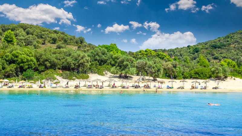 Koukounaries海滩,斯基亚索斯岛海岛,希腊 图库摄影