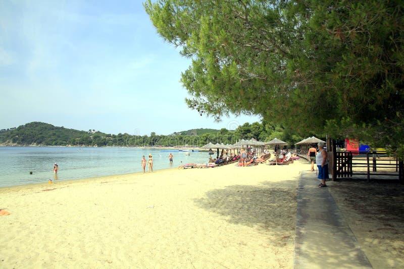 Koukounaries海滩,斯基亚索斯岛,希腊 库存照片