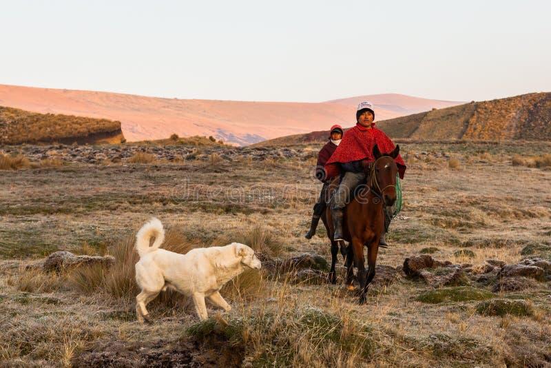 spotyka się z kowbojem rodeo