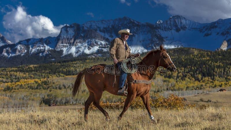 Kowboj jedzie konia przez historycznego Ostatniego Dolarowego rancho na Hastings obraz royalty free