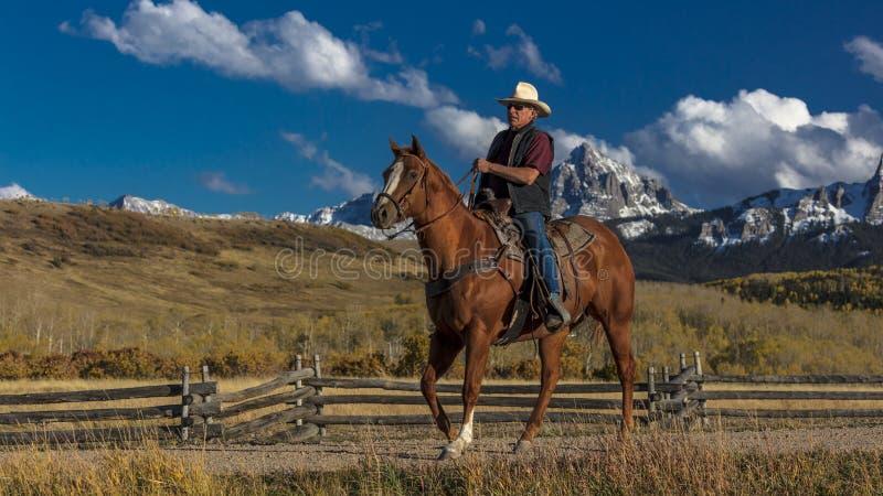 Kowboj jedzie konia przez historycznego Ostatniego Dolarowego rancho na Hastings obrazy royalty free