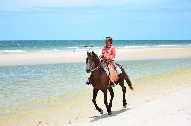 Kowboj jest jeździeckiego konia spacerem na plaży fotografia royalty free