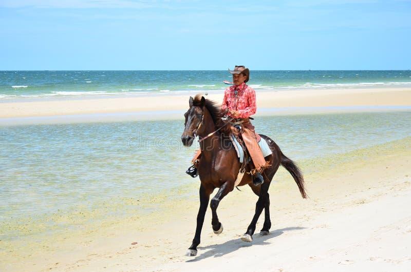 Kowboj jest jeździeckiego konia spacerem na plaży fotografia stock