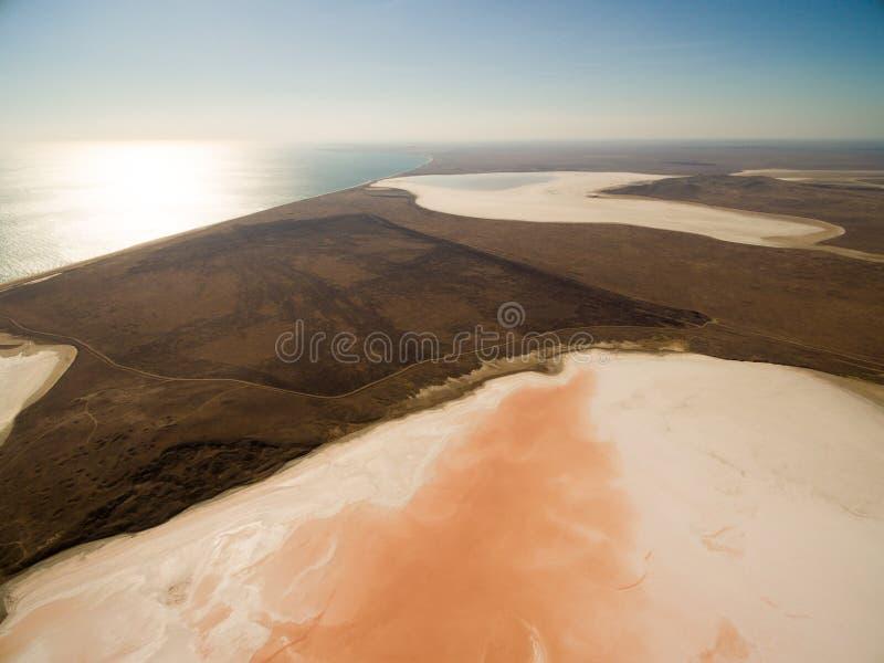 Koyashskoe lago rosa di sale in Crimea immagine stock