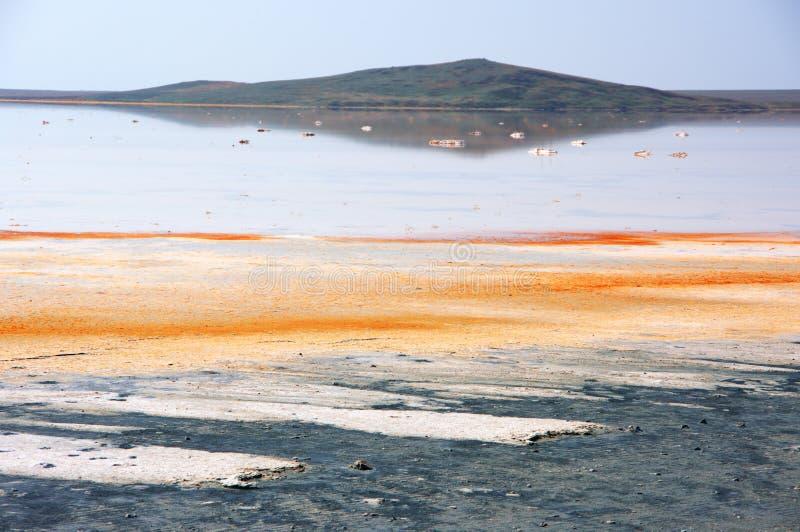 Koyashskoye salt sjö fotografering för bildbyråer