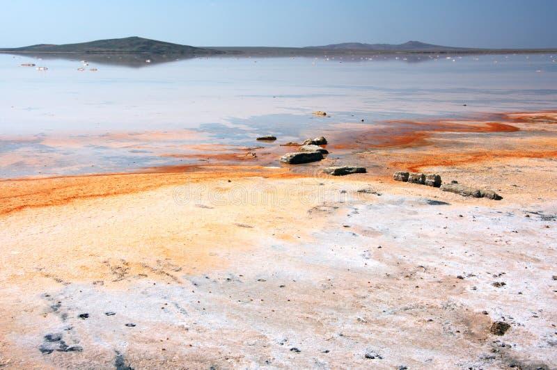 Koyashskoye salt sjö royaltyfri bild
