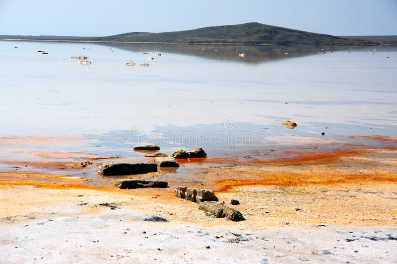Koyashskoye salt sjö royaltyfri fotografi