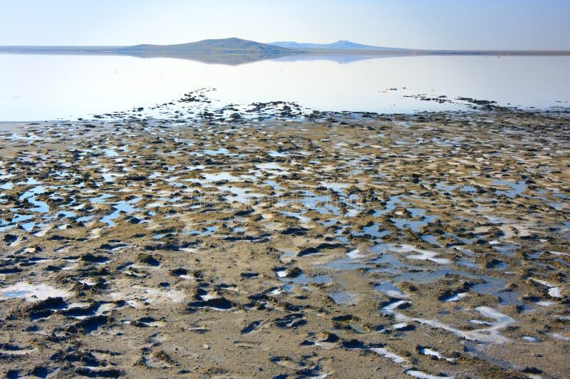 Koyashskoye salt sjö arkivfoto