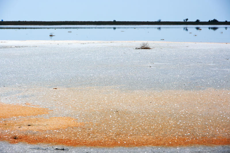 Koyashskoye salt sjö royaltyfria foton