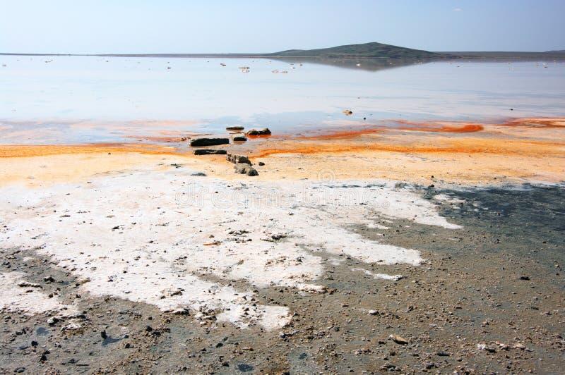 Koyashskoye salt sjö arkivbilder