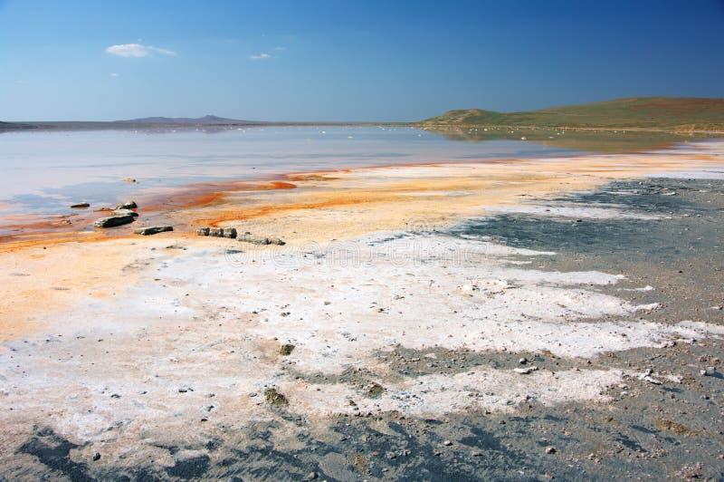 Koyashskoye salt sjö royaltyfri foto