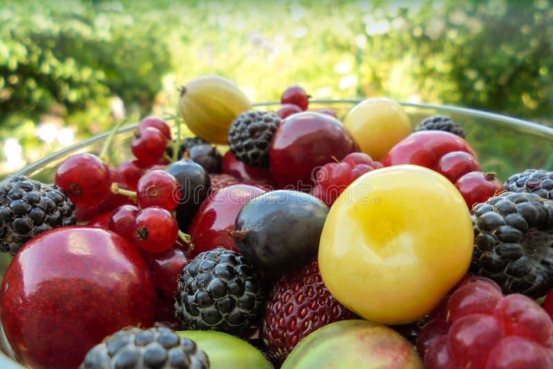 Kozhovnik de fraise de groseille rouge de framboise de baies d'été et merise dans un bol en verre images stock