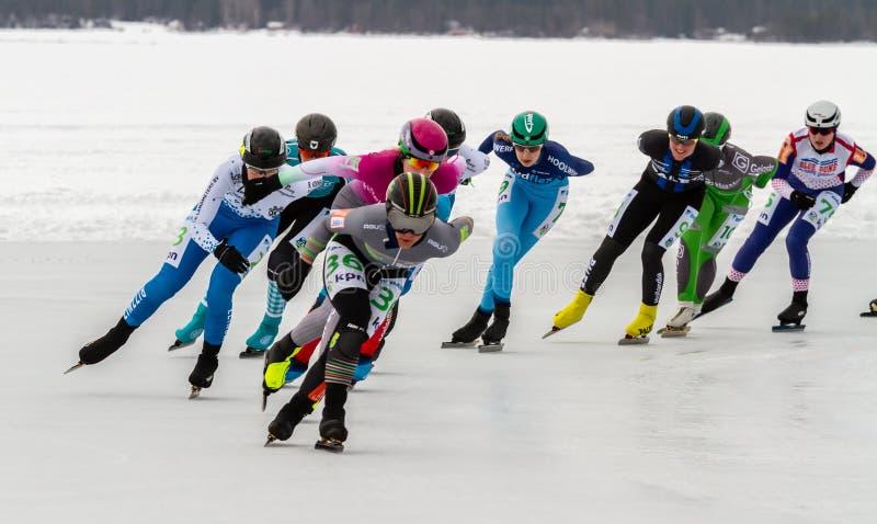 KPN Grand Prix dans Lulea, Suède, 2019 Groupe de patinage de glace de femmes images libres de droits