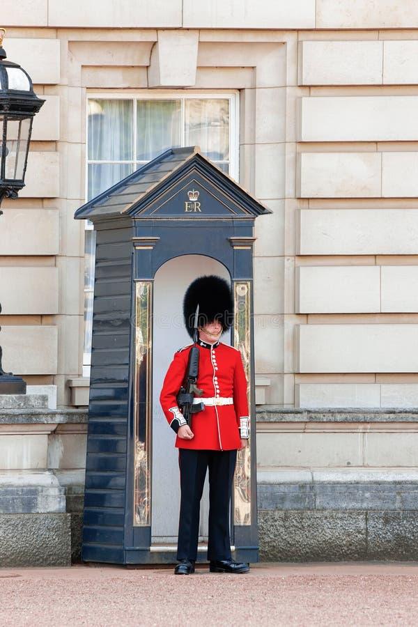 Królowa Królewski pracownik ochrony przy buckingham palace w ulicznym Londyn obrazy royalty free