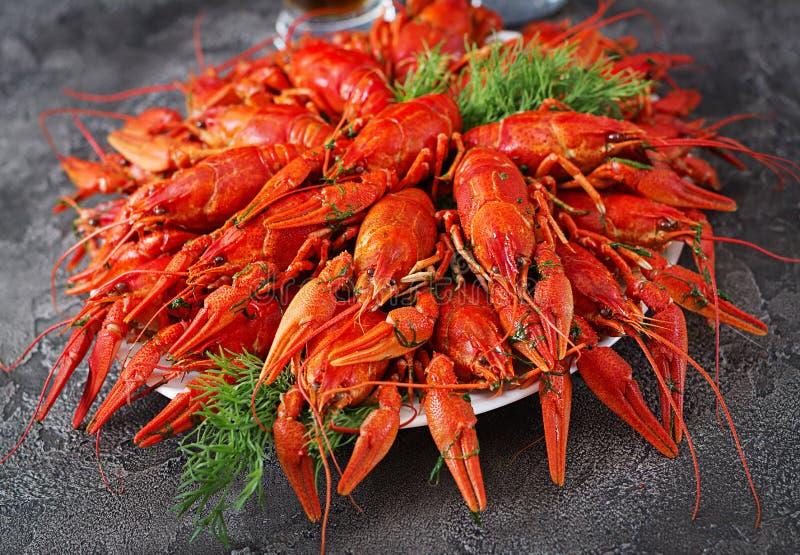 kräfta Röda kokta crawfishes på tabellen i lantlig stil, closeu arkivbilder