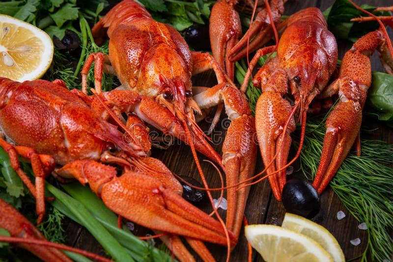 kräfta Röda kokta crawfishes på tabellen i lantlig stil, closeup Hummercloseup royaltyfria foton