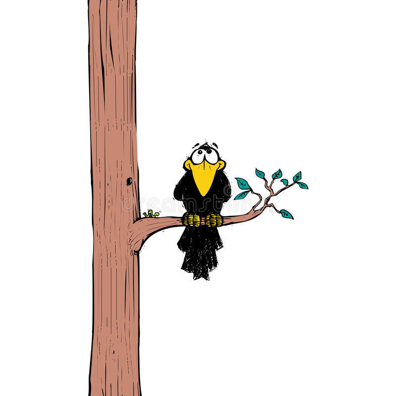Krähe Auf Baum Stockbilder