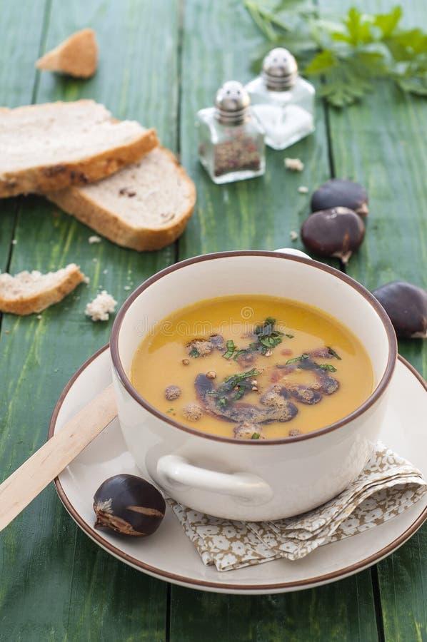 Kräm av kastanjebrun soppa royaltyfri bild