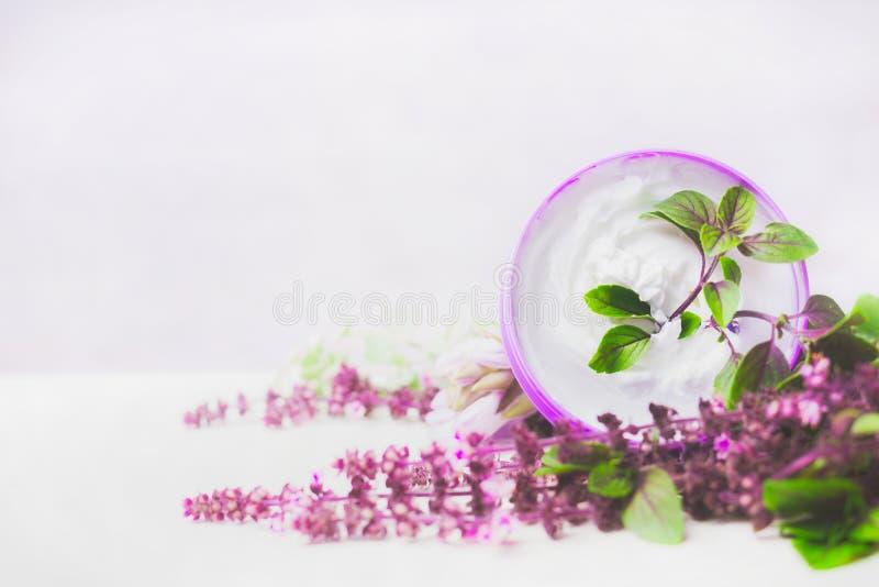 Kräm för hudomsorg i krus med purpurfärgade örter på vit träbakgrund naturlig cosmetic royaltyfria bilder