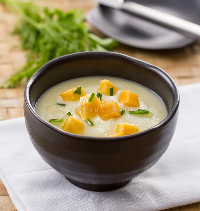 Kräm- soppa för fänkål arkivbild