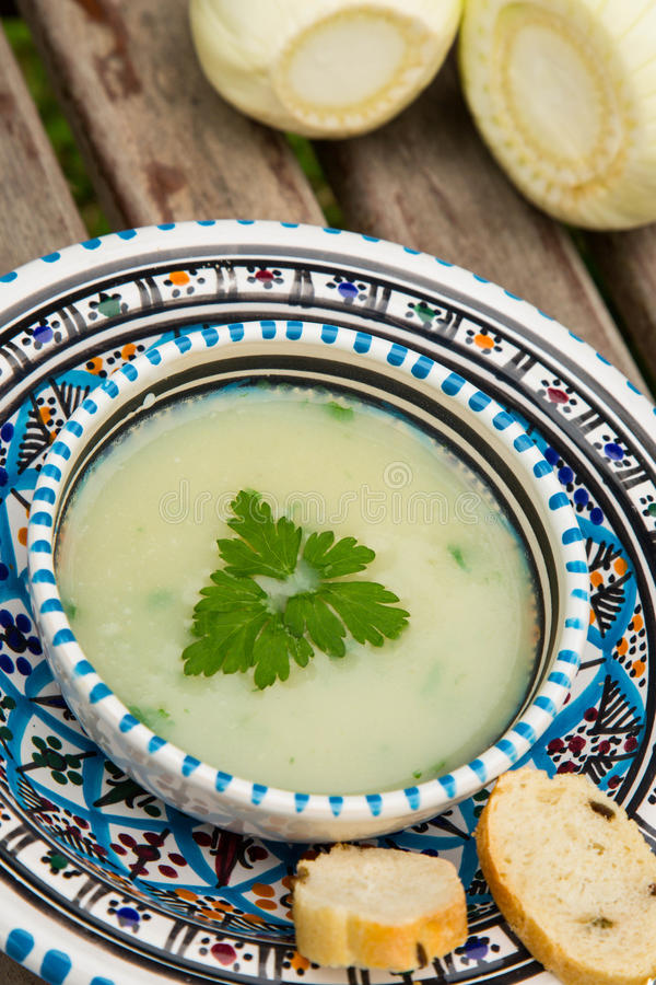 Kräm- soppa för fänkål i den traditionella tunisian plattan royaltyfria bilder