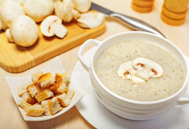 Kräm- soup för champinjon royaltyfri fotografi