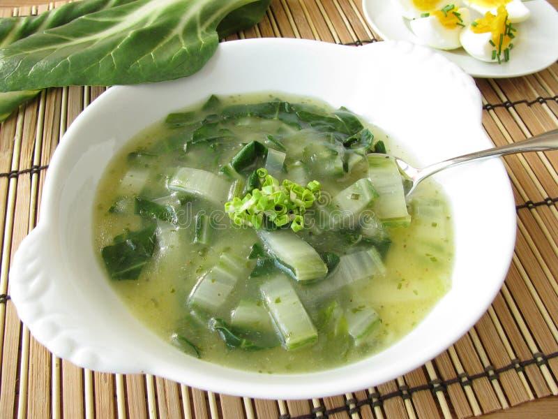 Kräm- soup för Chard royaltyfri bild