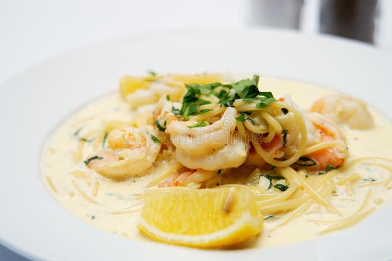 krämig italiensk pasta royaltyfria bilder