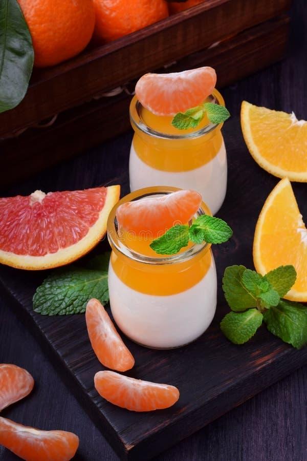 Krämig pannacotta och orange citrus gelé fotografering för bildbyråer