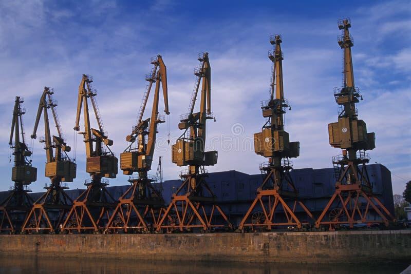 Kräne bei Puerto Madero stockfoto
