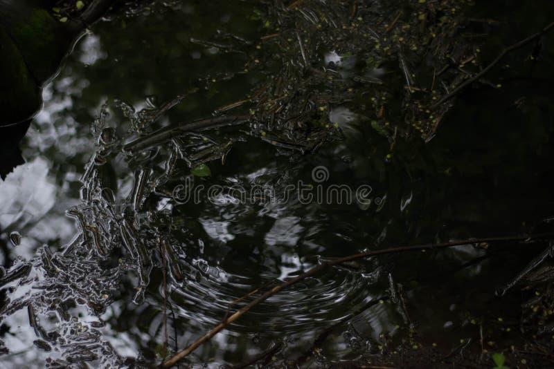 Kräuselungen auf dem Wasser im Fluss an einem regnerischen Tag lizenzfreies stockbild