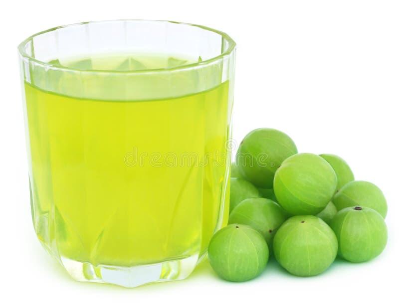 Kräuter-amla Saft mit frischen Früchten lizenzfreies stockfoto