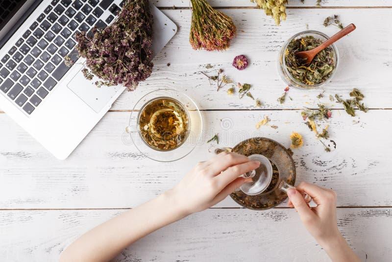 Kräuter- Tee für Haupt-medicina, flache Lage auf Tabelle lizenzfreie stockbilder