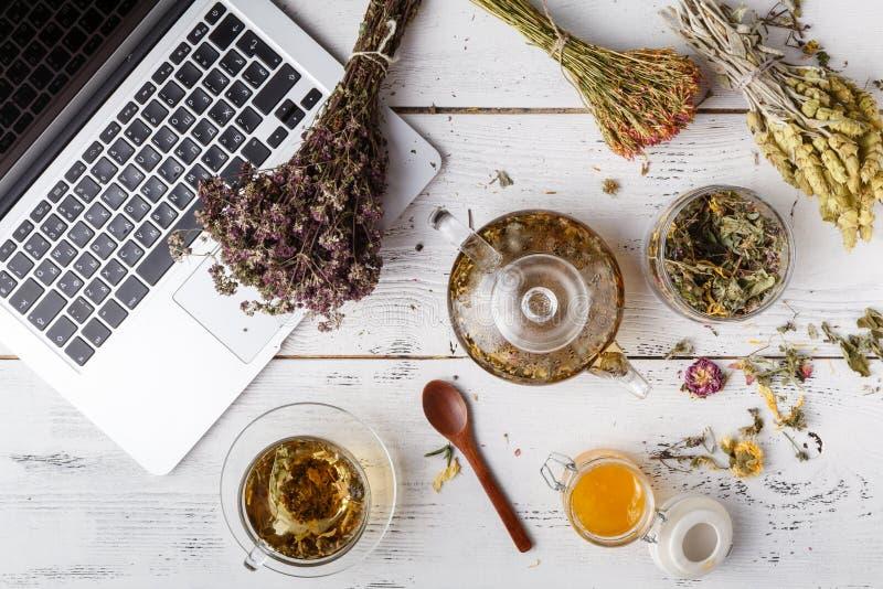 Kräuter- Tee für Haupt-medicina, flache Lage auf Tabelle lizenzfreie stockfotografie