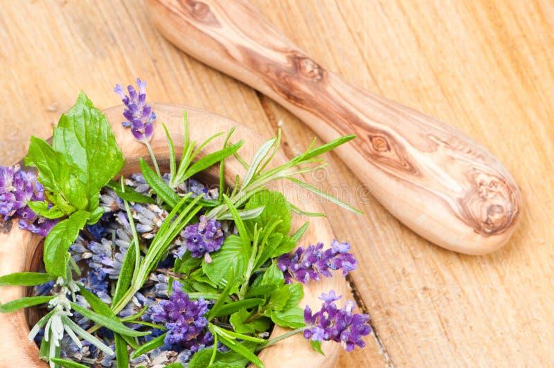 Kräuter u. Lavendel stockbild