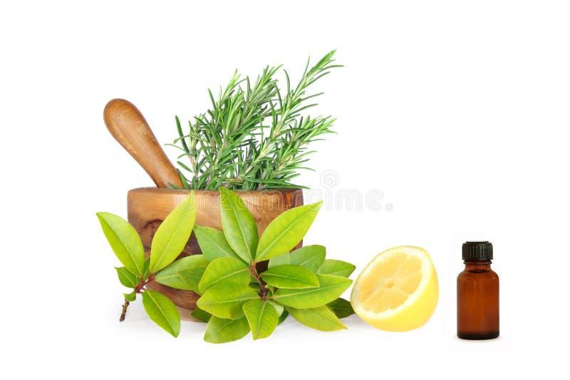Kräuter und Zitrone-Bestandteile lizenzfreies stockfoto