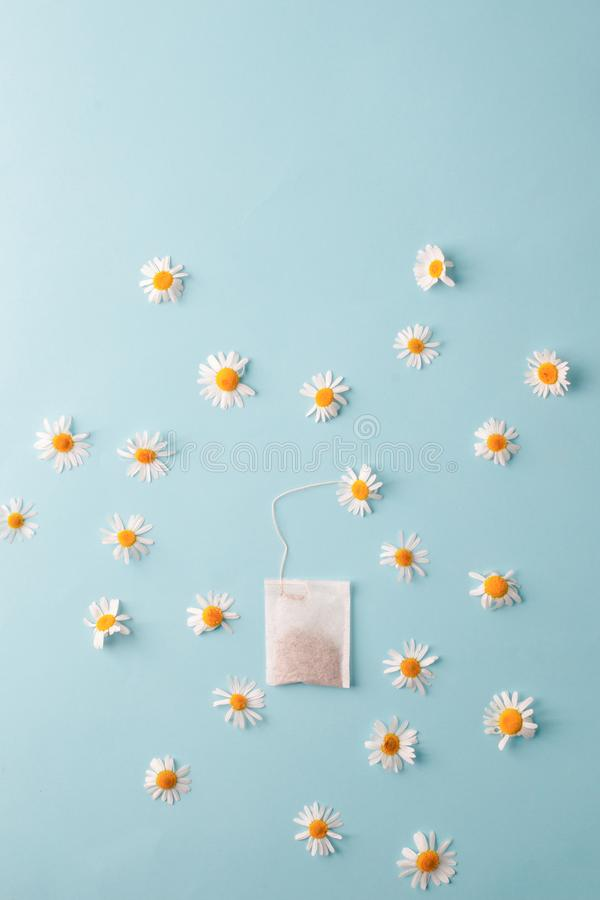 Kräuteralternativmedizin-Reihe: Kamillenblumen und -teebeutel auf blauem Hintergrund Saisonantikrise, Magen und Kälten stockfotos