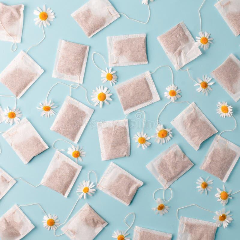 Kräuteralternativmedizin-Reihe: Kamillenblumen und -teebeutel auf blauem Hintergrund Saisonantikrise, Magen und Kälten stockbild